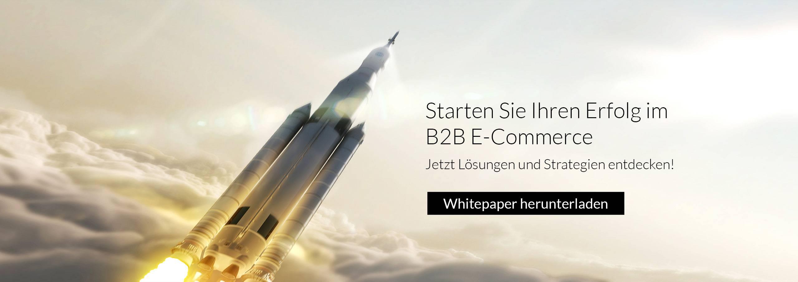 Starten Sie Ihren Erfolg im B2B E-Commerce