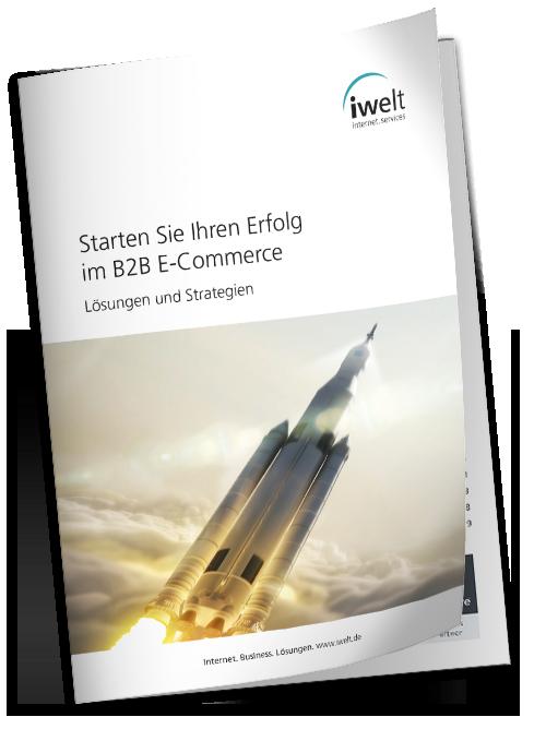 Whitepaper B2B E-Commerce